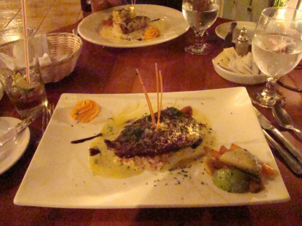 main courses, snook and mahi mahi