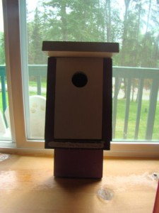 Livy's birdhouse, for purple loving birds