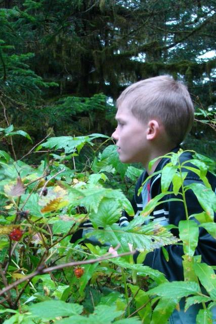 Ben picking salmonberries