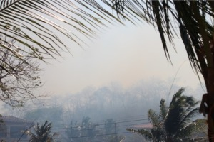 the yellowish grayish smoke covered us for hours
